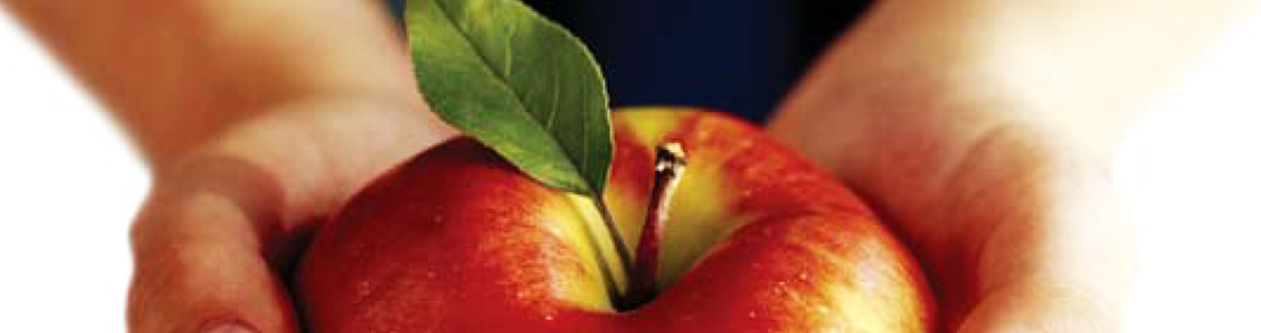 Pair of hands holding an apple as Banner image for HACCP Foundation training course