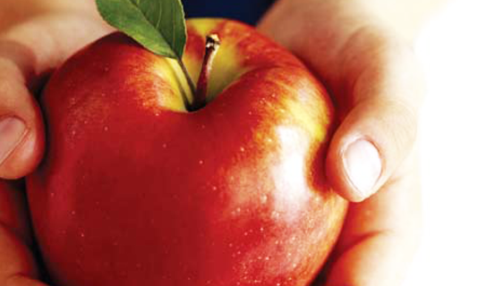 An apple in hands as Link image for HACCP Foundation training course