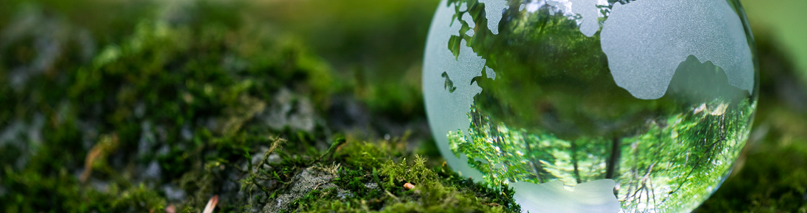 A glass globe as Banner image for ISO 14001:2015 Environmental Management Systems Auditor/Lead Auditor training course