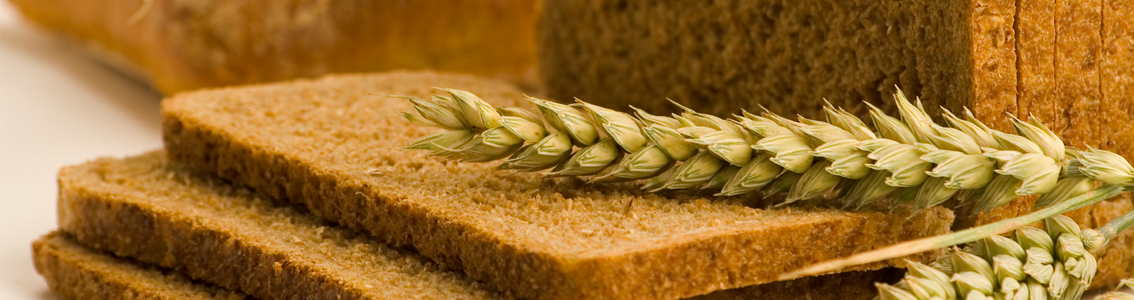 Sliced bread and wheat as Banner image for SQF Advanced Practitioner Training Course
